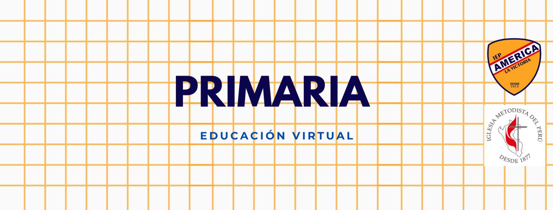 PRIMARIA VIRTUAL